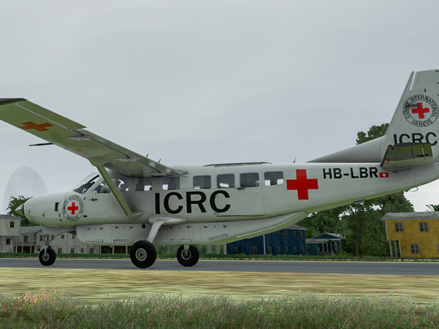 Red Cross Mission